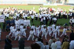 AFA Day 2012